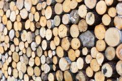 Cut firewood closeup Stock Photo