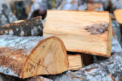 Cut firewood Royalty Free Stock Photo
