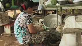 Cut , fish, mekong,  cambodia, southeast asia stock video footage