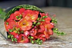Cut Flowers Royalty Free Stock Photos