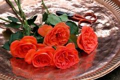 Cut flowers Stock Photo