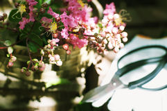 Cut flowers and gardening tools. Cut flowers in a basket and gardening tools Stock Photo