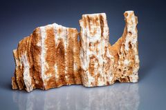 Cut fragment of marble Turkey Royalty Free Stock Images