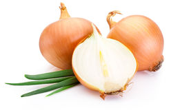Cut fresh bulbs of onion on white background