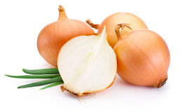 Cut fresh bulbs of onion on white background Stock Images