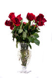 Cut Glas Vase of Red Roses on White Stock Photography