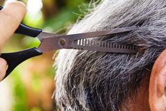Cut the hair Stock Photo