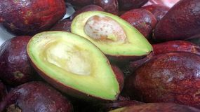 Cut half fresh avocado fruit contain single seed ready for smoothies and salad ingredient Stock Images
