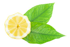 Cut half of a lemon with leaves Stock Image