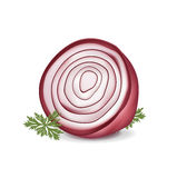 Cut in half red onion Royalty Free Stock Photos