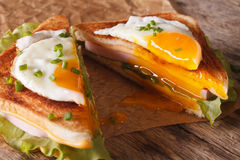 Cut in half sandwich with a fried egg, ham and cheese close-up. Royalty Free Stock Images