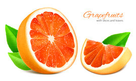 Cut half and slice grapefruit with leaves. Royalty Free Stock Image