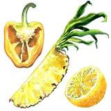 Cut half of yellow pepper bell, pineapple, lemon citrus fruit, isolated, hand drawn watercolor illustration on white Stock Illustration