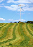 Cut hayfield, utility pole. Electric transmission line in middle of cut hay field against blue sky Royalty Free Stock Photos