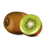 Cut kiwi fruit and whole kiwi isolated vector illustration