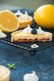 Cut of lemon curd and blueberry jam tarts with meringue Stock Photography
