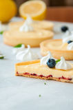 Cut of lemon curd and blueberry jam tarts Stock Photography