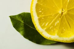 Cut lemon with green leaves Royalty Free Stock Photography