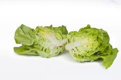 Cut Lettuce Stock Photos