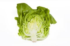 Cut lettuce Royalty Free Stock Image