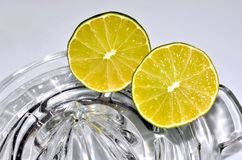 Cut lime citrus resting on glass juicer Stock Photos