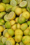 Cut Limes Stock Image