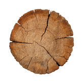 Cut of a log Stock Photography