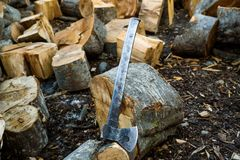 Cut log fire wood and old axe. In back yard. Renewable resource of a energy. Environmental concept royalty free stock images