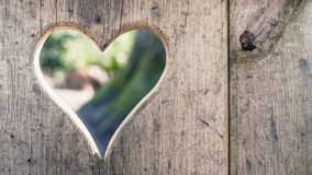 Cut log wood with lightening heart shape, background texture Stock Photography