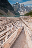 Cut logs with snowy mountains Stock Photos