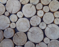 Cut logs, wood background Stock Photos