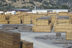 Cut lumber stacked at a lumber mill in Willits, California Royalty Free Stock Photo