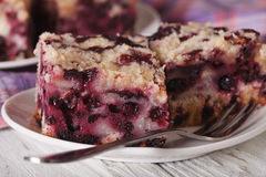 Cut macro blueberry pie on a plate. horizontal Stock Image