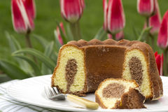 Cut marble cake. In the garden Stock Photography