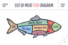 Cut of meat set. Poster Butcher diagram and scheme - Fish. Vintage typographic hand-drawn. Cut of meat set. Poster Butcher diagram and scheme - Fish. Colorful Royalty Free Stock Photo