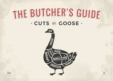 Cut of meat set. Poster Butcher diagram, scheme - Goose Royalty Free Stock Photography