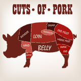 Cut of meat set. Poster Butcher diagram. Scheme and guide - Pork. Vintage typographic hand-drawn on a black chalkboard background. Vector illustration Stock Photo