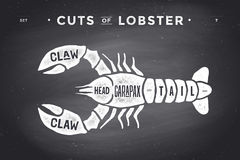 Cut of meat set. Poster Butcher diagram and scheme - Lobster. Vintage typographic hand-drawn visual guide for butcher shop on chalk black background. Vector Royalty Free Stock Image