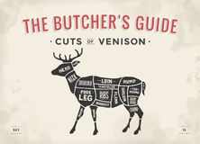 Cut of meat set. Poster Butcher diagram, scheme - Venison. Vintage typographic hand-drawn deer silhouette for butcher shop, restaurant menu, graphic design Stock Images