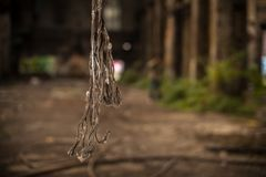 Cut metal cables hanging in industrial building stock photo