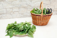 Cut nettle leaves in a dish and basket Stock Photography