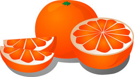 Cut orange illustration Stock Photo