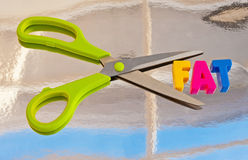 Cut out fat. A pair of scissors with green handles with blades enclosing the text ' fat ' in colorful uppercase letters a concept image for improved diet Stock Images