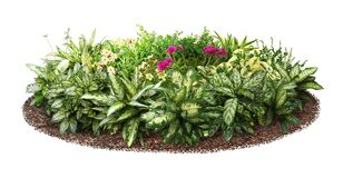 Free Cut Out Flowerbed. Garden Design. Royalty Free Stock Image - 216196306