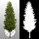 Cut out pine tree