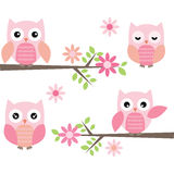 Cut Owl and Branches Stock Images