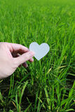 Cut paper with the logo of heart over green grass Royalty Free Stock Image