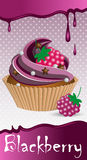 Cup cake blackberry Royalty Free Stock Photography