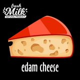 Cut piece of cheese edam vector isolated on black background. Edam cheese vector icon Stock Photography