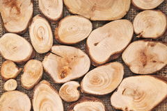 Cut pieces of wood logs as background Royalty Free Stock Photography